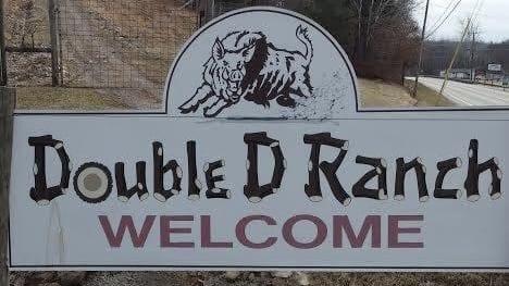 DoubleD Ranch Hog Hunt
